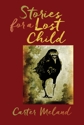 Stories for a Lost Child - Meland, Carter
