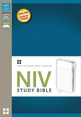 Study Bible-NIV - Zondervan