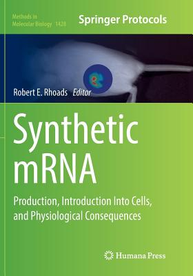 Synthetic Mrna: Production, Introduction Into Cells, and Physiological Consequences - Rhoads, Robert E (Editor)