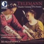 Telemann: Chamber Cantatas