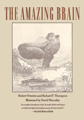 The Amazing Brain - Ornstein, Robert E, and Crnstein, Robert E, and Ornstein, and Thompson, Richard F