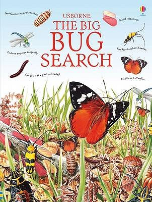 The Big Bug Search - Young, Caroline