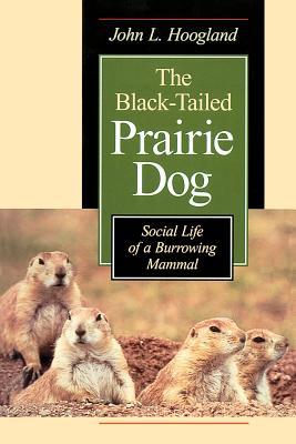 The Black-Tailed Prairie Dog: Social Life of a Burrowing Mammal - Hoogland, John L