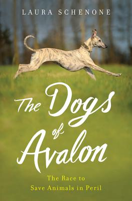 The Dogs of Avalon: The Race to Save Animals in Peril - Schenone, Laura