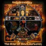 The Hour of Bewilderbeast - Badly Drawn Boy