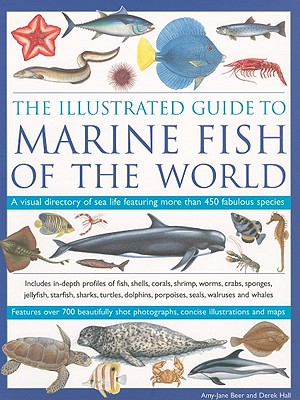 The Illustrated Guide to Marine Fish of the World: A Visual Directory of Sea Life Featuring More Than 450 Fabulous Species - Beer, Amy-Jane, Dr., and Hall, Derek