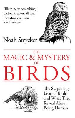 The Magic & Mystery of Birds: The Surprising Lives of Birds and What They Reveal About Being Human - Strycker, Noah