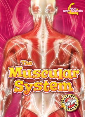 The Muscular System - Pettiford, Rebecca