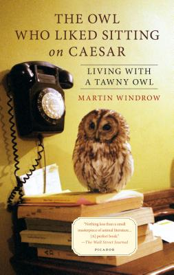 The Owl Who Liked Sitting on Caesar: Living with a Tawny Owl - Windrow, Martin