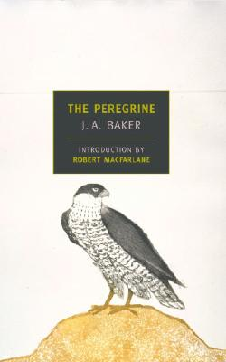 The Peregrine - Baker, J A, and MacFarlane, Robert, M.D (Introduction by)