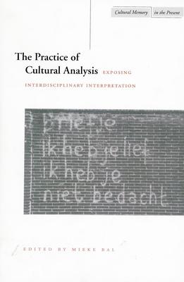 The Practice of Cultural Analysis: Exposing Interdisciplinary Interpretation - Bal, Mieke (Editor)