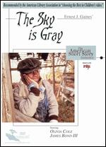 The Sky Is Gray - Stan Lathan