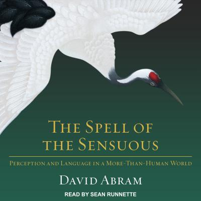 david abram ecology of magic Essays speaking with animal tongues by david abram slight of hand magician and eco-philosopher david abram has conjured up a new way of viewing the roles, styles, and magic of language.