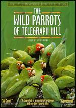 The Wild Parrots of Telegraph Hill [2 Discs] [Collector's Edition]