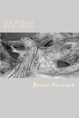 The World We're from - Stewart, Brian