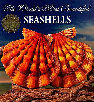 The World's Most Beautiful Seashells - Carmichael, Pele, and Hill, Leonard, and Ohr, Tim (Editor)
