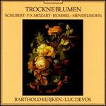 Trockne Blumen: 19th Century Flute Music