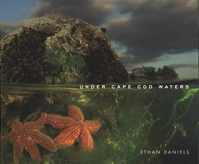 Under Cape Cod Waters - Daniels, Ethan