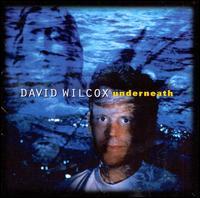 Underneath - David Wilcox