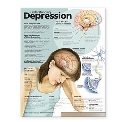 Understanding Depression Anatomical Chart - Anatomical Chart Company (Prepared for publication by)