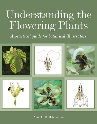Understanding the Flowering Plants: A Practical Guide for Botanical Illustrators - Bebbington, Anne