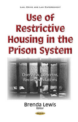 Use of Restrictive Housing in the Prison System: Overview, Concerns, Recommendations - Lewis, Brenda (Editor)