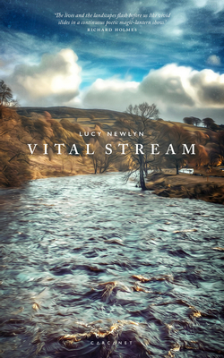 Vital Stream - Newlyn, Lucy, and Holmes, Richard (Preface by)