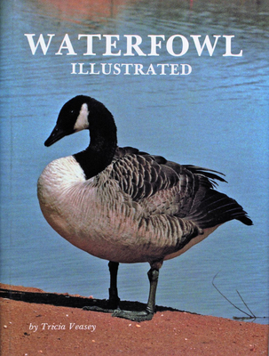 Waterfowl Illustrated - Veasey, Tricia