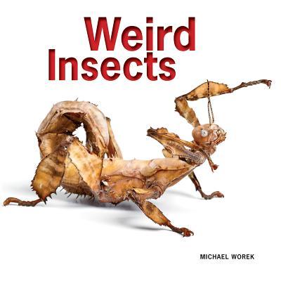 Weird Insects - Worek, Michael