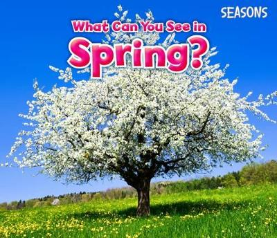 What Can You See In Spring? - Smith, Sian