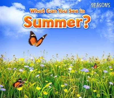 What Can You See In Summer? - Smith, Sian