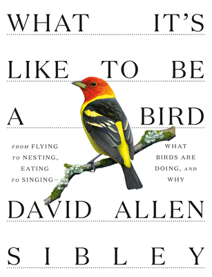 What It's Like to be a Bird - Sibley, David Allen
