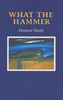 What the Hammer - Healy, Dermot