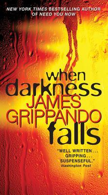 When Darkness Falls - Grippando, James
