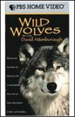 Wild Wolves