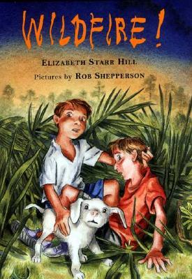Wildfire! - Hill, Elizabeth Starr