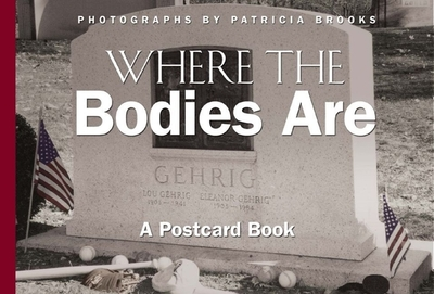 Wildflowers of Yellowstone and the Rockies - Phillips, H. Wayne (Photographer)