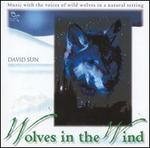Wolves in the Wind