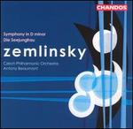Zemlinsky: Symphony in D major; Die Seejungfrau